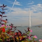 The Jet d'eau and flowers in Geneva